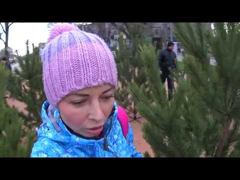 Крым.👆ОБСУДИМ?!👆Изменения в Севастополе. Планы на БУДУЩЕЕ в 2018г ! Нужны ВЛОГИ? Крым 2017