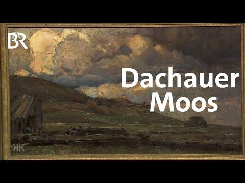 Aufgeladene Stimmung: Dachauer Moos | Kunst + Krempel | BR