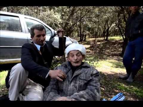 Kabyle de Blida #4