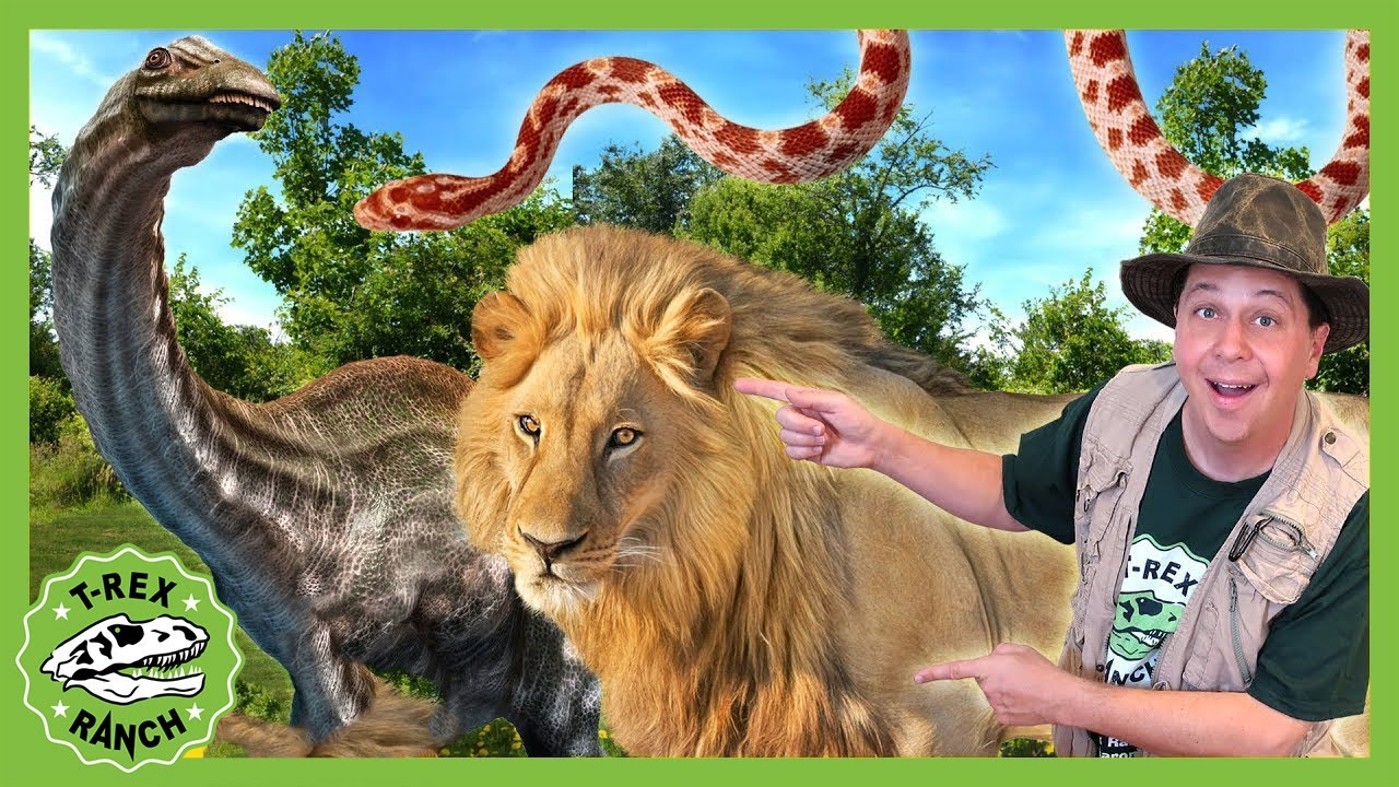 Dinosaur Adventure With Zoo Animals! T-Rex Ranch Adventures for Kids