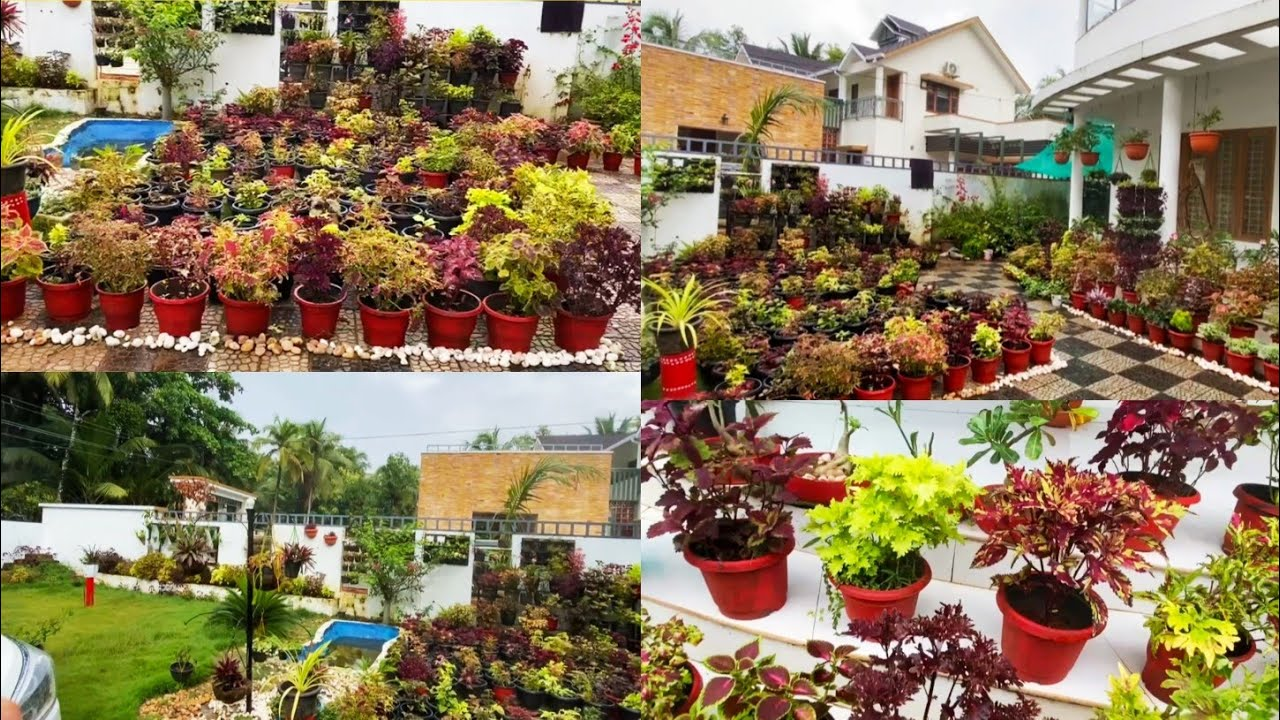 Garden tour   Small Spaces Home Garden Tour   Coleus and Indoor Plants   Sit out Garden   Vasi Vlogs