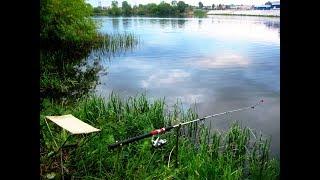 Рибалка вдалась!!!! Я люблю рибалку, а Ви? Гребний канал! Одеса. Літо. Природа. Україна. VLOG.