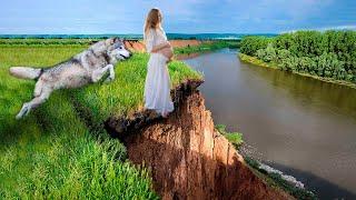 Беременная стояла на краю обрыва готовясь совершить ужасное но внезапно вышел волк
