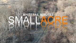 Whitetail Minutes: Food Plot Seed - Don't Buy Crap