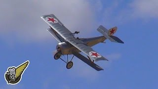 Russian Civil War aircraft - Nieuport 11 fighter