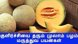 Mulaam Pazham (Muskmelon) Maruthuva Payankal | Health Benefits of Musk Melon