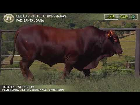 LOTE 017