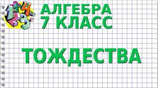 ТОЖДЕСТВО. Видеоурок | АЛГЕБРА 7 класс