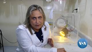 Brazilian Researchers Modernize Mosquito Traps
