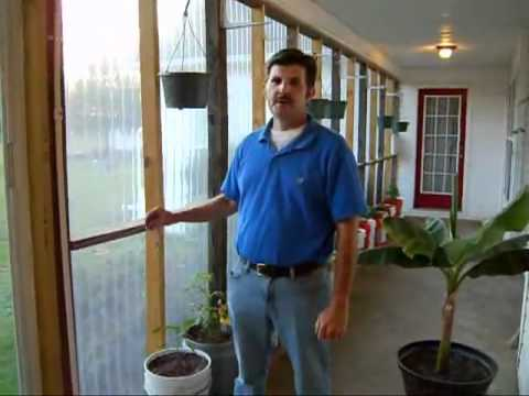 Harold From Georgia And His Very Impressive Self Watering