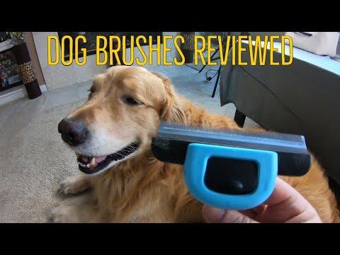 pets grooming tools