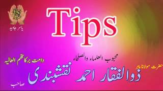 Tips By Shaykh Zulfiqar Ahmed Naqshbandi