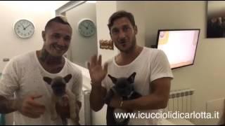 Francesco Totti e Radja Nainggolan -  I Cuccioli di Carlotta