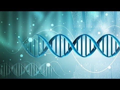 1.2. Качество генной терапии: дизайн вектора и генетическая разработка