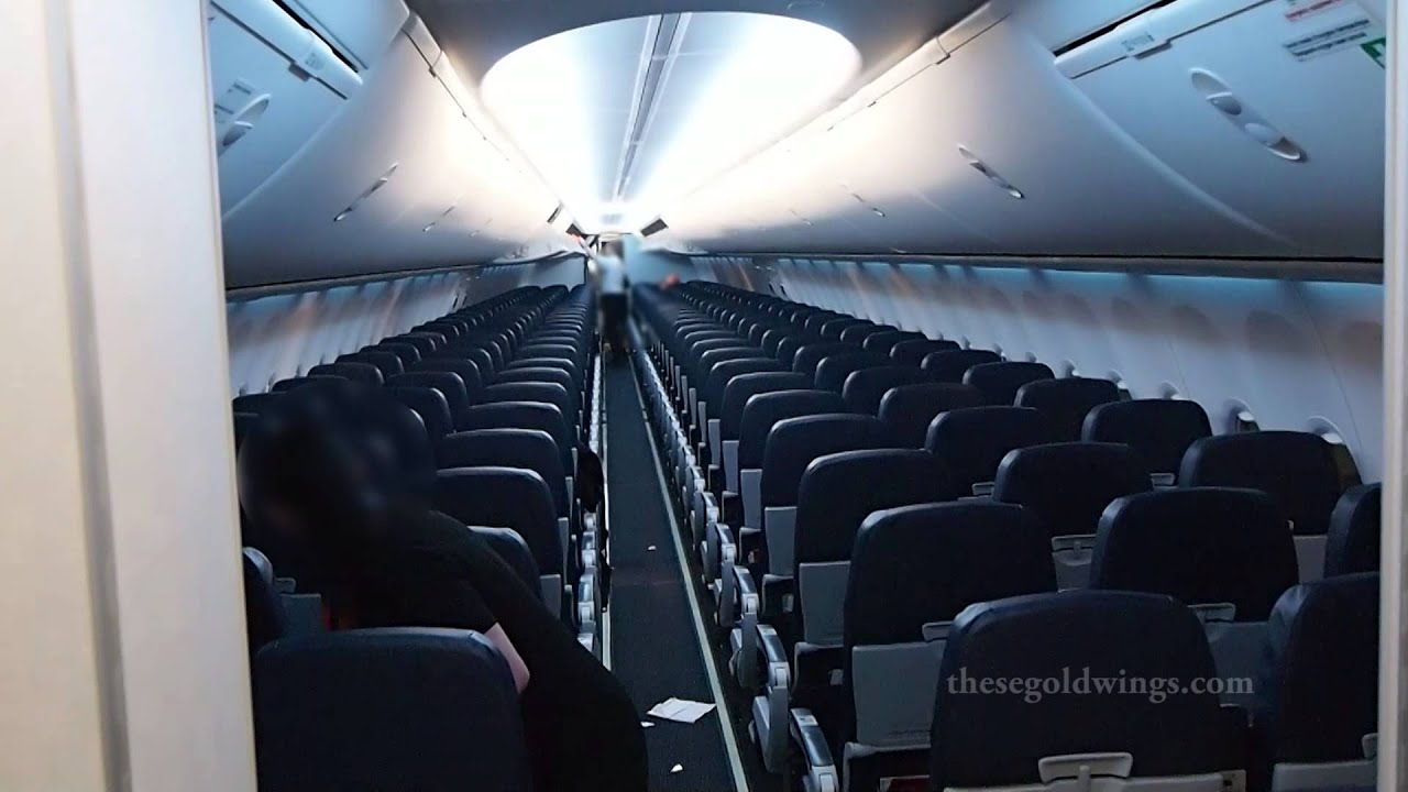 Boeing 737 800 aircraft inside image - Boeing 737 800 Aircraft Inside Image 58