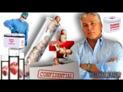 Rudy Mazzocchi   Black Market of Human Organ Transplants