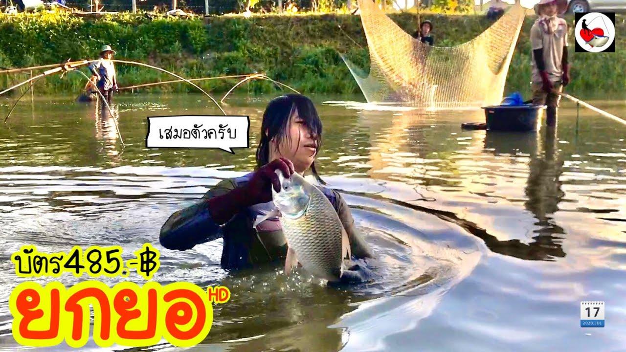 ยกยอ บ่อตกปลา ►Fishing lifestyle Ep.419