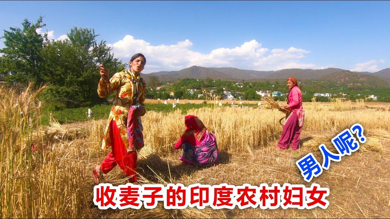【印度旅行14】深入印度农村,干活的全是妇女,男人呢? Indian peasant woman