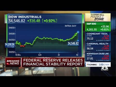 Federal Reserve releases financial stability report
