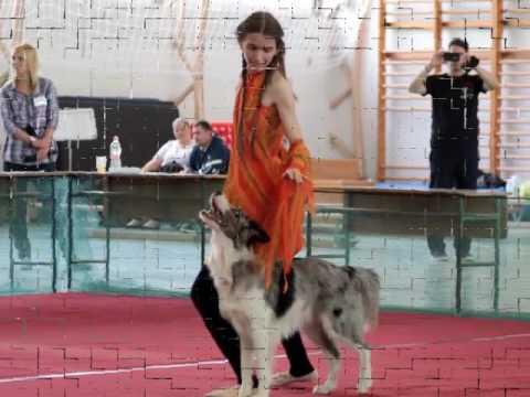 I. Hatvani Dog Dancing Bajnokság - Zen Freestyle 1 és HTM 2