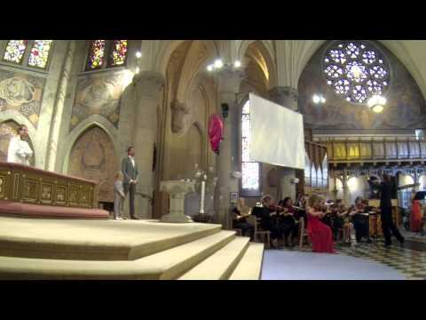 Romantic Flight (How To Train Your Dragon) - Live Orchestral