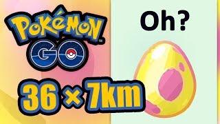 36 × 7KM-Eier, die Suche nach regionalen Shinys | Pokémon GO Deutsch #1130