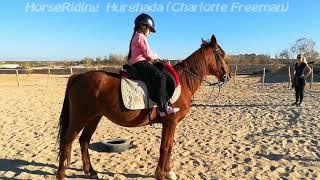 HorseRiding Hurghada. Уроки верховой езды с детьми и взрослыми в Хургаде