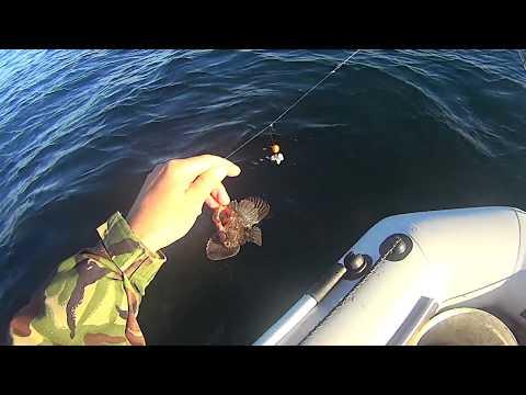для морской рыбалки с берегам монтаж