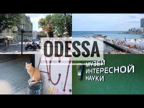 ВЛОГ: Одесса - первое впечатление. Один день на море 😭🍹. Ladydg87Ukr