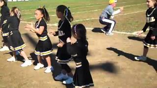Carrigan Cheerleading Payal Steelers 2010 #2