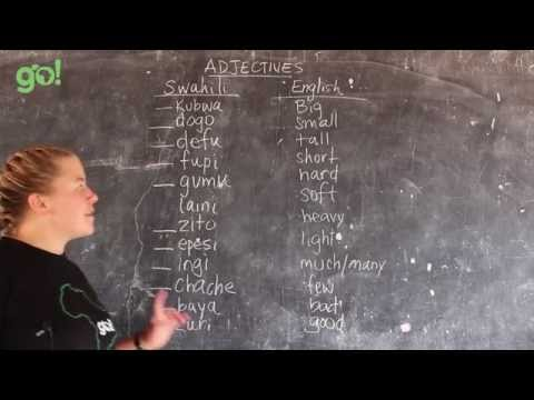 Video 16 - GO! presents BEST Swahili Tutorials - ADJECTIVES (live from Tanzania)
