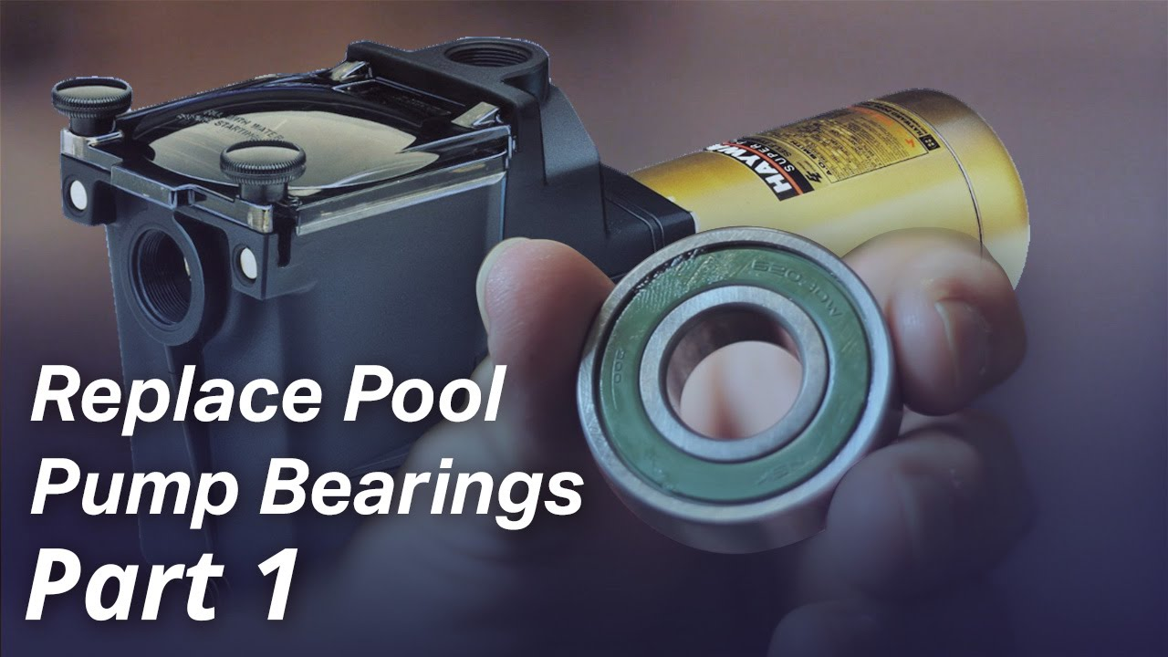 Jacuzzi Pool Pump Parts How To Replace The Bearings In A Pool Pump Motor Part I