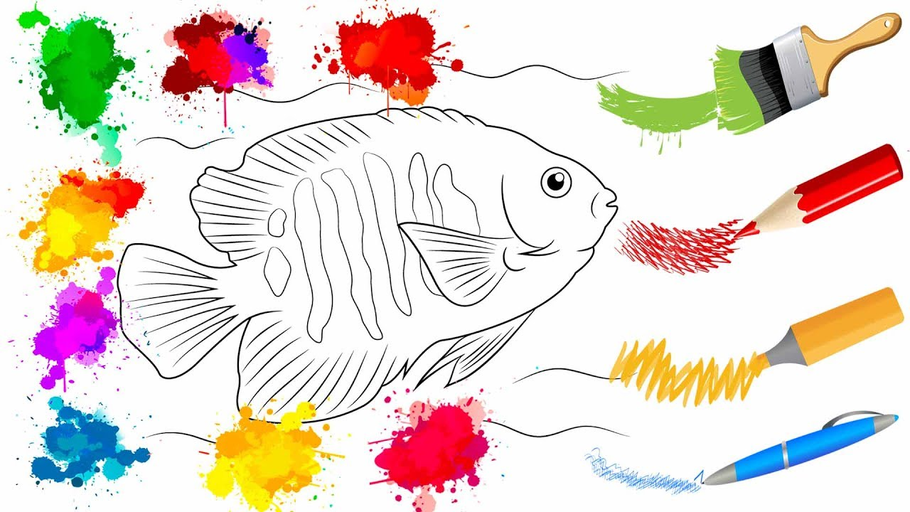 coloring pages fish drawing animals fish art colours for