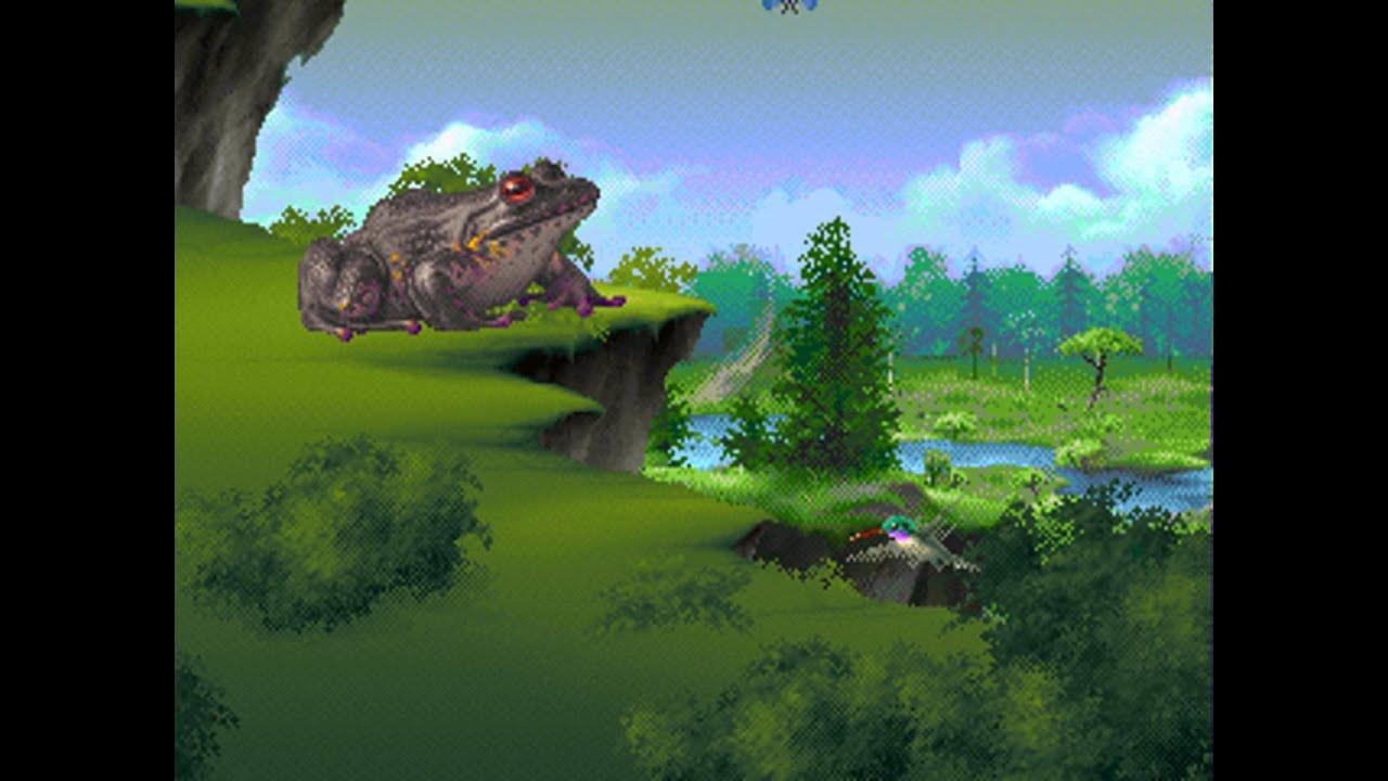 Resultado de imagem para kolibri 32x frog