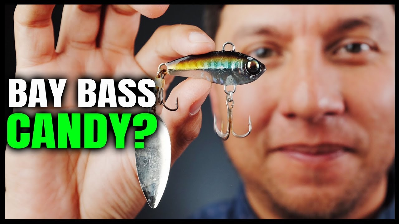 Damiki Tail Spinner for Spotted Bay Bass?