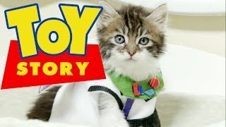 Repeat youtube video Disney Pixar's Toy Story (Cute Kitten Version)
