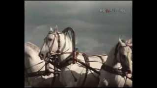 Мчатся кони... (1972)