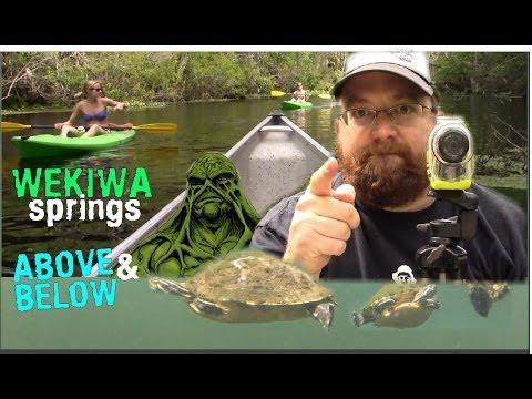 WEKIWA SPRINGS FLORIDA - ABOVE AND BELOW THE WATER! - Matt's Rad Show, Episode 29
