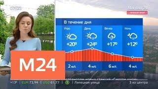 """""""Утро"""": в Москве ожидаются ливни и грозы - Москва 24"""