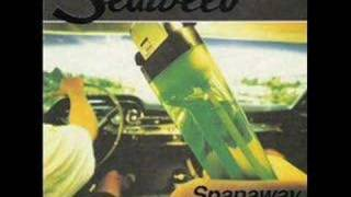 Seaweed - Start With