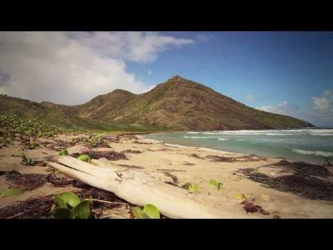 The Island - St Kitts