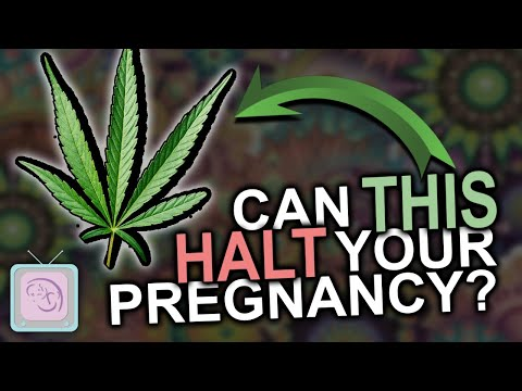 Can you smoke pot when TTC? Some REALLY surprising findings about marijuana and fertility