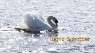 1. Teil - Vedische Schöpfungsgeschichte - ein Grobüberblick von Ingrid Schröder