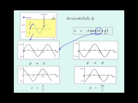 SHM Equation วิชา ฟิสิกส์1 040313005 มหาวิทยาลัยเทคโนโลยีพระจอมเกล้าพระนครเหนือ
