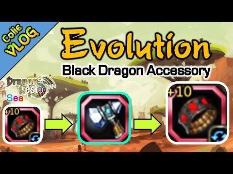 Evolution / Black Dragon Accessory / DragonNest SEA
