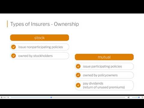 Types Of Insurers