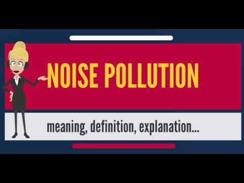 What Does Noise Pollution Mean Meaning Explanation