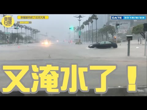 【政客三寶#4】高雄經驗!幸福城市怎麼又淹水了?