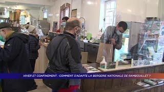 Yvelines | Hiver et confinement : Comment s'adapte la bergerie nationale de Rambouillet ?