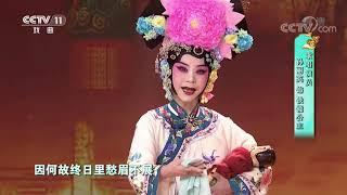 [梨园闯关我挂帅]京剧《四郎探母》选段 演唱:孙丽英 萧雅| CCTV戏曲